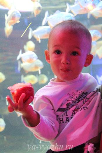 С внучком в океанариуме в Анапе